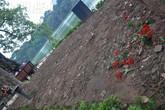 Hàng nghìn người 'san phẳng' vườn hoa Hồ Gươm sau đêm giao thừa
