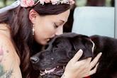Gắng gượng sống đến ngày cô chủ làm lễ kết hôn, chú chó khiến ai cũng phải rơi nước mắt