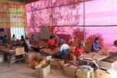 Hương trầm xứ Nghệ nhộn nhịp vào vụ Tết