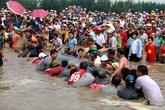 """""""Choáng"""" với hình ảnh hàng ngàn người giải cứu cá voi hơn chục tấn"""