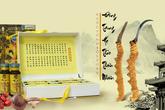 Đông trùng hạ thảo: Món quà ý nghĩa tặng cha mẹ mùa Vu lan