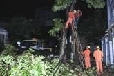 Đông Anh, Hà Nội: Mất điện trên diện rộng do sét, mưa bão