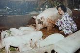 Lộ ảnh cực hiếm của mẹ danh hài Hoài Linh thời khốn khó