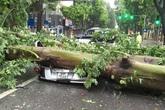 Bão số 1 qua Hà Nội: Cây đè bẹp ô-tô, gió thổi bay người và xe máy