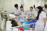 Bảy người nhập viện vì ăn nấm lạ