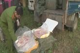 Bắt giữ nửa tấn nầm lợn thối sắp tuồn vào các hàng ăn