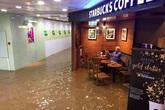 Cụ ông bình thản đọc báo trong quán cafe ngập lụt ở Hong Kong