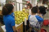 Đặc sản bưởi Phúc Trạch lên kệ hệ thống siêu thị VinMart Hà Nội