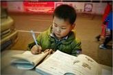 Hình ảnh cậu bé chăm chỉ học bài trên thùng rác cạnh xe khoai lang nướng của mẹ gây xúc động mạnh
