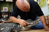 Cụ ông người Nhật đánh răng cho cá sấu suốt 34 năm