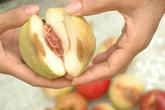 Tiếc quả dập nát, ăn dễ nhiễm khuẩn