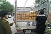 17.000 lọ sa tế giả 'lén lút' tìm đường đầu độc người tiêu dùng