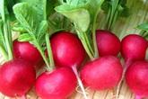Giữ sức khỏe mùa thu: Tận dụng rau củ quả để thải độc cơ thể