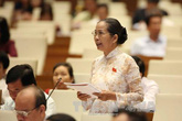 Đại biểu Trần Du Lịch: Chính phủ nhiệm kỳ qua có 3 điểm nổi bật