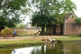 Thâm cung bí sử (93 - 10): Bài học từ làng quê