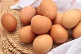 Thời hạn và cách bảo quản trứng, sữa tránh hình thành độc tố