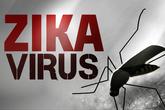 Virus Zika tấn công 7 quốc gia ASEAN