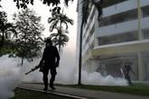 Zika tấn công 70 quốc gia, sẽ phạt nếu cố tình không thực hiện biện pháp phòng dịch