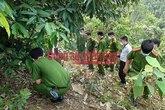 Phát hiện xác người phụ nữ bị trói tay trong rừng