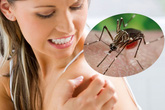Phụ nữ chưa có thai nhiễm Zika ảnh hưởng thế nào đến đường con cái