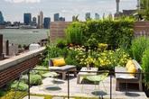 9 khu vườn vừa dễ làm vừa hợp thời dành cho sân thượng nhỏ