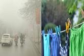 Trời mưa ẩm mãi thế này, phơi quần áo thế nào cho nhanh khô?