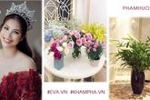 Bất ngờ với tài cắm hoa khéo léo trang trí nhà tuyệt đẹp của hoa hậu Phạm Hương