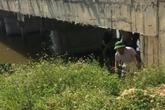 Nghệ An: Người phụ nữ mang bầu cùng 2 con nhảy cầu tự tử
