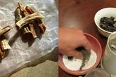 5 mẹo làm phân bón cực đơn giản chỉ từ vỏ chuối khô, rau lớn nhanh như thổi