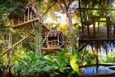 Ngôi nhà cây lơ lửng giữa rừng của cặp vợ chồng mộng mơ