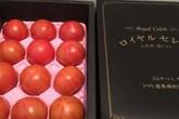 """Cà chua Hoàng gia Nhật 1,6 triệu/kg: Nhà giàu Việt """"ăn chơi sợ gì mưa rơi"""""""