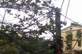 Hà Nội: Người thích, người lo trước việc xem xét bỏ loa phường