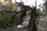 Đường phố ngổn ngang, nhà mất mái khi bão số 12 đổ bộ