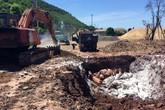 Quảng Ninh: Phát hiện 72 con lợn đang phân hủy trên tàu