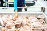 Sốc: Đùi gà Mỹ giá chỉ 7.000 đồng/kg, gà Việt khốn đốn