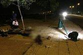 Nam thanh niên tử vong vì lao lên vỉa hè tông gãy cột điện