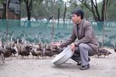 Người đàn ông chăn 10.000 con vịt, kiếm tiền tỷ mỗi năm
