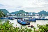 Cát Bà sẽ là vùng đất không có khí thải carbon đầu tiên ở Việt Nam