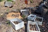 Quảng Ngãi đào hầm cho nổ bom bi 'bẫy người'