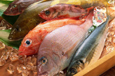 Cách chọn cá biển đông lạnh tươi ngon, không hóa chất