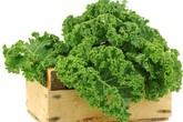 Thực hư thông tin rau cải xoăn Kale có độc?