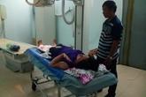 33 người ở Trà Vinh nhập viện vì… cán chó