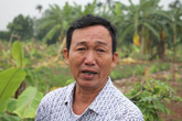 Công an Hải Phòng lên tiếng vụ giám đốc doanh nghiệp thuê côn đồ chém hàng nghìn cây chuối