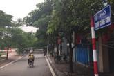 Hà Nội triển khai phố đi bộ Trịnh Công Sơn: Cần tạo sự đồng thuận của người dân