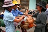 Chủ động ứng phó dịch cúm gia cầm