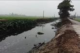 Hà Nam: Một nhà nuôi lợn, cả làng buồn...nôn