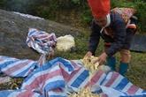 Quảng Ninh: Chuyện buồn ở một xã nghèo