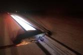 Cá sấu bò ra đường băng tấn công máy bay