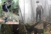 Liều mạng với nghề săn rắn độc