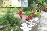 Người dân Quảng Ninh phát hoảng khi bị dầu tràn xuống ruộng